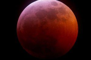 Lunar Eclipse Jan 2019